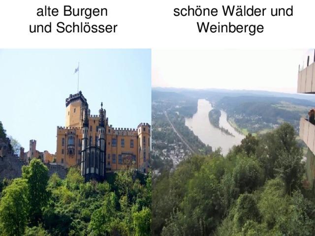 alte Burgen  und Schlösser schöne Wälder und  Weinberge
