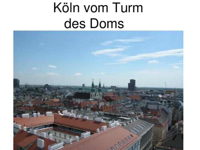 Köln vom Turm  des Doms