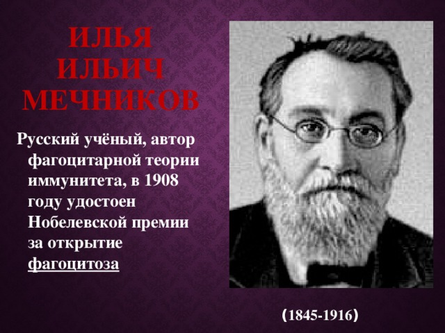 Илья Ильич Мечников Русский учёный, автор фагоцитарной теории иммунитета, в 1908 году удостоен Нобелевской премии за открытие фагоцитоза ( 1845-1916 )
