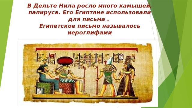 В Дельте Нила росло много камышей, папируса. Его Египтяне использовали для письма .  Египетское письмо называлось иероглифами