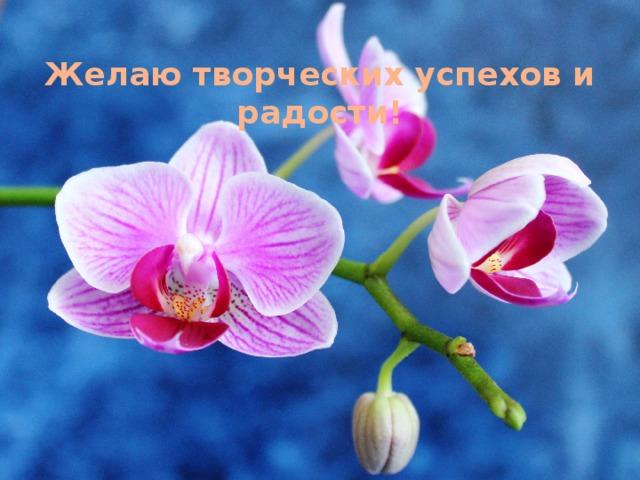 Желаю творческих успехов и радости!