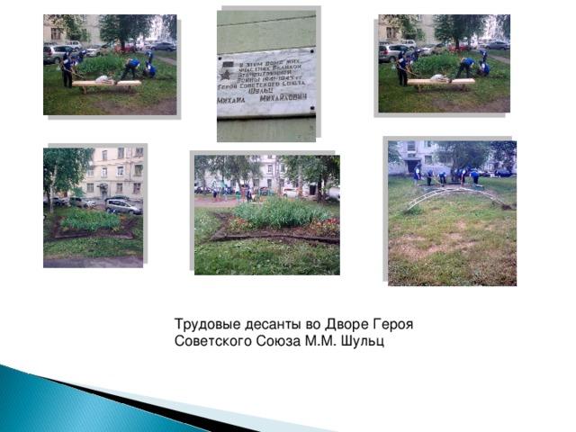 Трудовые десанты во Дворе Героя Советского Союза М.М. Шульц