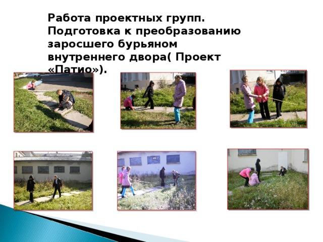 Работа проектных групп. Подготовка к преобразованию заросшего бурьяном внутреннего двора( Проект «Патио»).