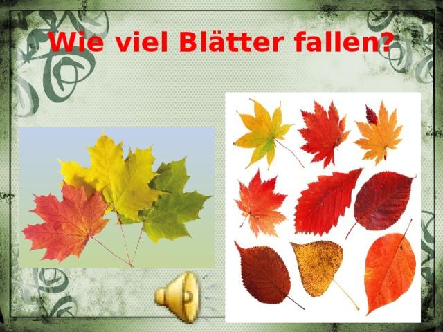 Wie viel Blätter fallen?