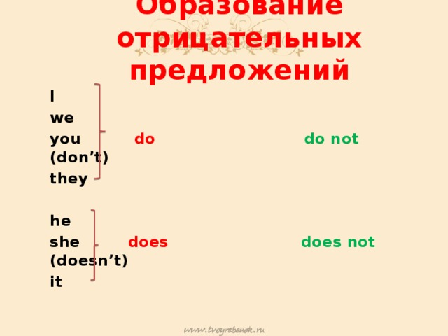 Образование отрицательных предложений I we you do  do  not (don't) they  he she does  does  not (doesn't) it
