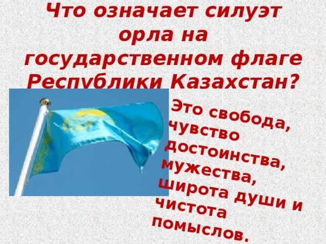 Это свобода, чувство достоинства, мужества, широта души и чистота помыслов. Что означает силуэт орла на государственном флаге Республики Казахстан?