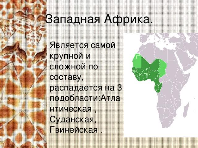 Западная Африка. Является самой крупной и сложной по составу, распадается на 3 подобласти:Атлантическая , Суданская, Гвинейская .
