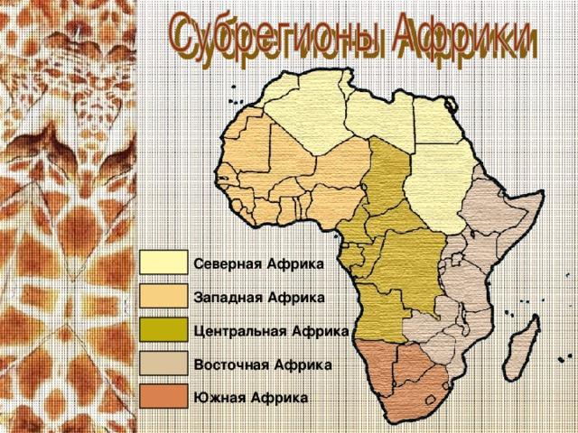 Северная Африка Западная Африка Центральная Африка Восточная Африка Южная Африка