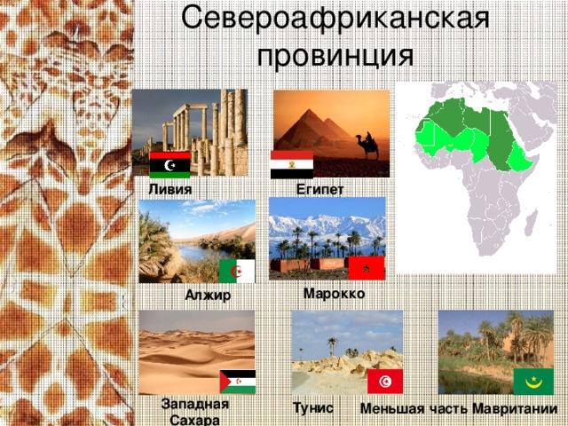 Североафриканская провинция   Египет Ливия Марокко Алжир Западная Сахара  Тунис Меньшая часть Мавритании