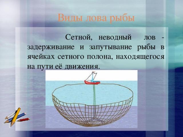 Виды лова рыбы  Сетной, неводный лов - задерживание и запутывание рыбы в ячейках сетного полона, находящегося на пути её движения.