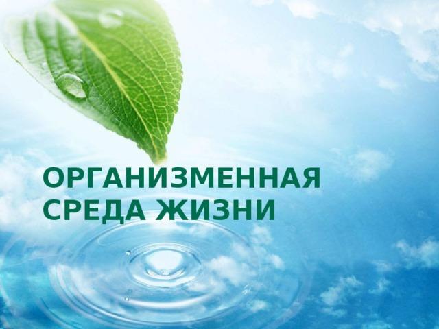 Организменная среда жизни