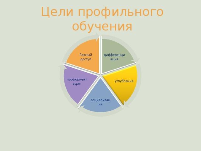 Цели профильного обучения