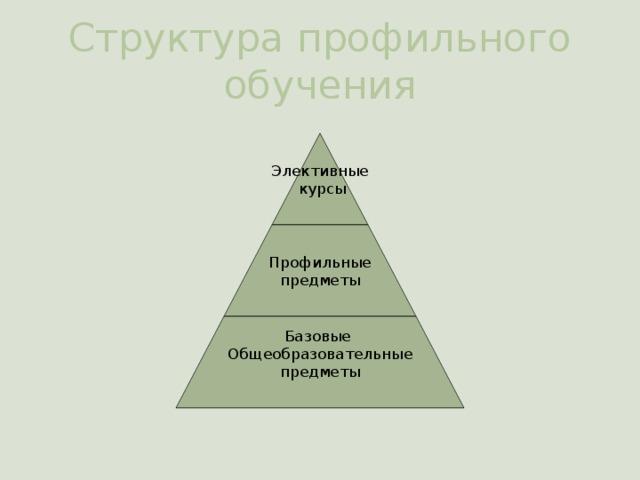 Структура профильного обучения Элективные  курсы Профильные предметы Базовые Общеобразовательные предметы