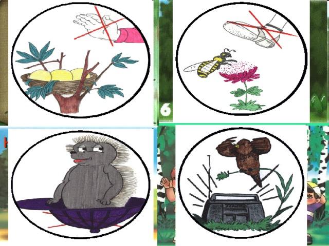 Не разоряйте птичьи гнёзда Не рвите и не вытаптывайте цветы    Не шумите в лесу Не забирайте из леса домой животных!