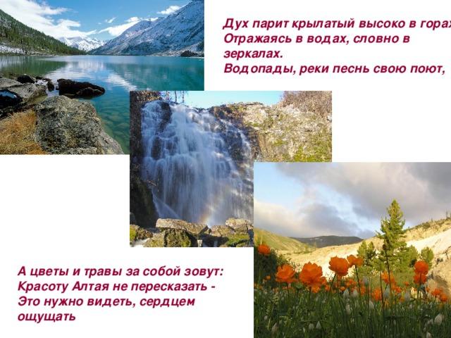 Дух парит крылатый высоко в горах,  Отражаясь в водах, словно в зеркалах.  Водопады, реки песнь свою поют,    А цветы и травы за собой зовут:  Красоту Алтая не пересказать -  Это нужно видеть, сердцем ощущать