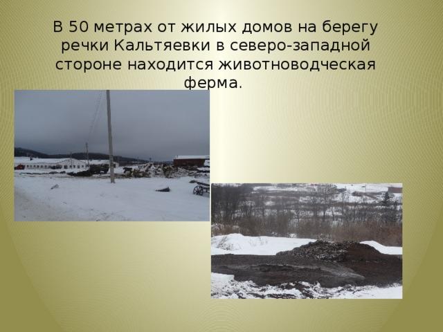В 50 метрах от жилых домов на берегу речки Кальтяевки в северо-западной стороне находится животноводческая ферма.