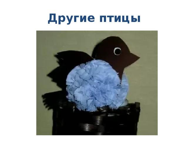 Другие птицы