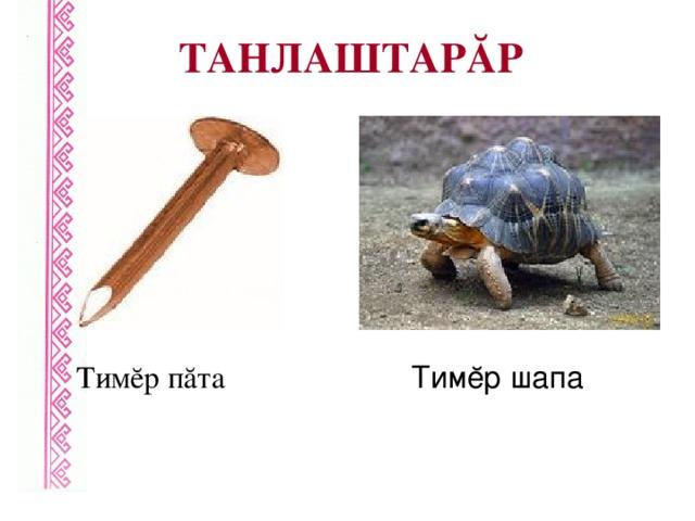 ТАНЛАШТАРĂР Тимĕр пăта Тимĕр шапа