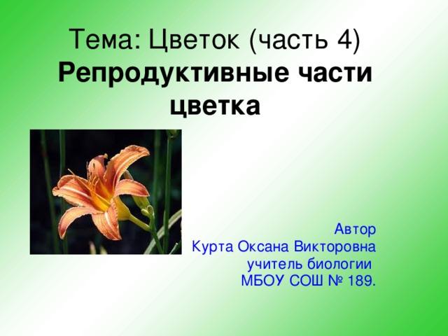 Тема: Цветок (часть 4)  Репродуктивные части цветка    Автор Курта Оксана Викторовна учитель биологии МБОУ СОШ № 189.