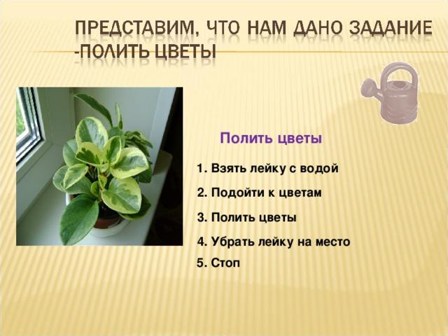 Полить цветы 1. Взять лейку с водой 2. Подойти к цветам 3. Полить цветы 4. Убрать лейку на место 5. Стоп