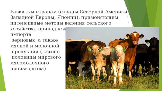 Развитым странам (страны Северной Америки, Западной Европы, Японии), применяющим интенсивные методы ведения сельского хозяйства, принадлежит сегодня основная доля импорта  зерновых, а также мясной и молочной  продукции ( свыше  половины мирового мясомолочного производства)