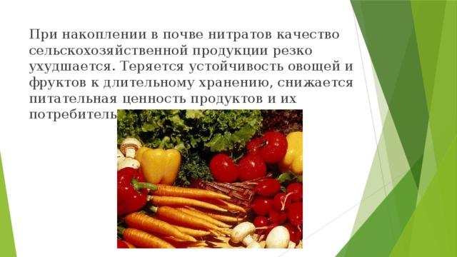 При накоплении в почве нитратов качество сельскохозяйственной продукции резко ухудшается. Теряется устойчивость овощей и фруктов к длительному хранению, снижается питательная ценность продуктов и их потребительские качества.