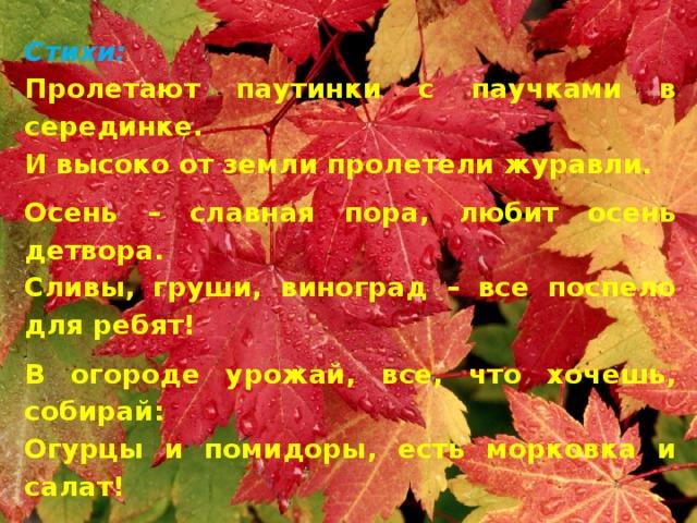 Стихи: Пролетают паутинки с паучками в серединке. И высоко от земли пролетели журавли. Осень – славная пора, любит осень детвора. Сливы, груши, виноград – все поспело для ребят! В огороде урожай, все, что хочешь, собирай: Огурцы и помидоры, есть морковка и салат! Лук на грядке, перец сладкий И капусты целый ряд!