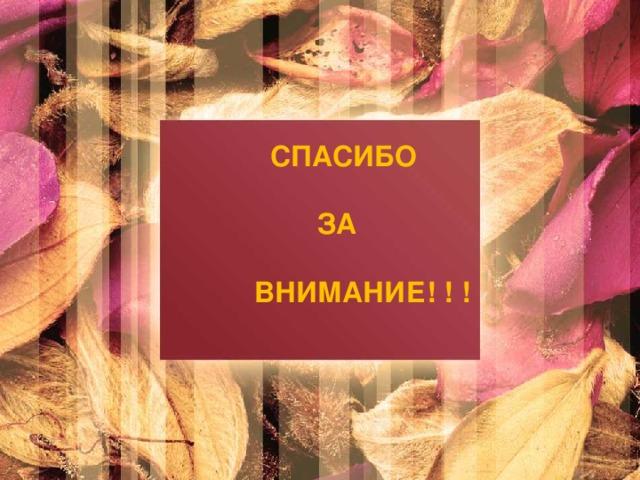 СПАСИБО   ЗА   ВНИМАНИЕ! ! !
