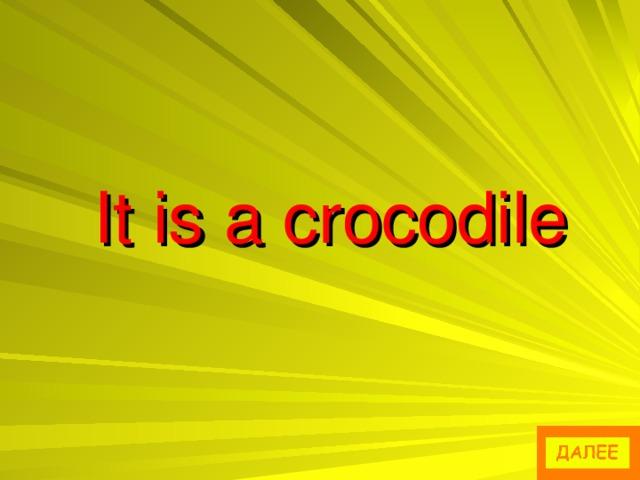 It is a crocodile