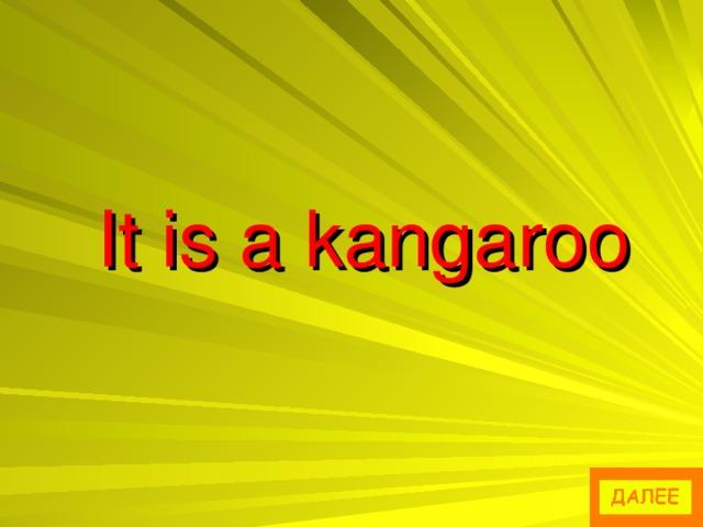 It is a kangaroo