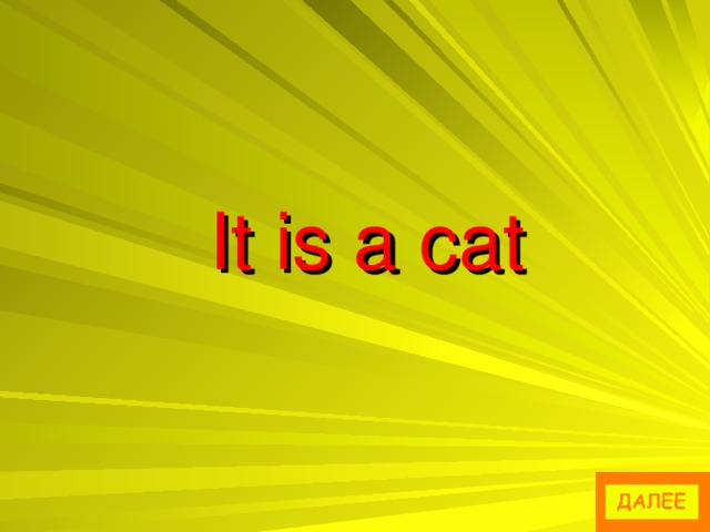 It is a cat