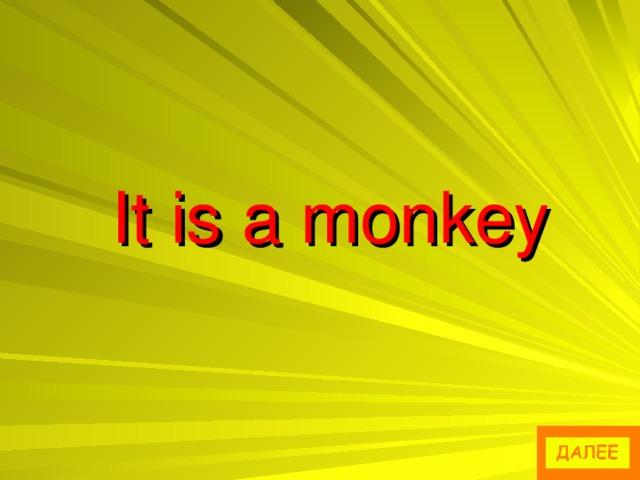 It is a monkey