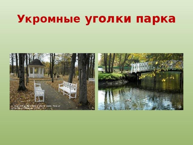 Укромные уголки парка Аллея приводит к тому месту, где на берегу пруда, в пору детства Лермонтова, была беседка (в настоящее время восстановлена). В одном из ранних стихотворений