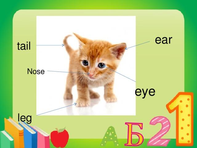 ear tail Nose eye leg
