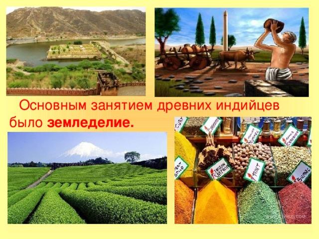 Основным занятием древних индийцев было земледелие.
