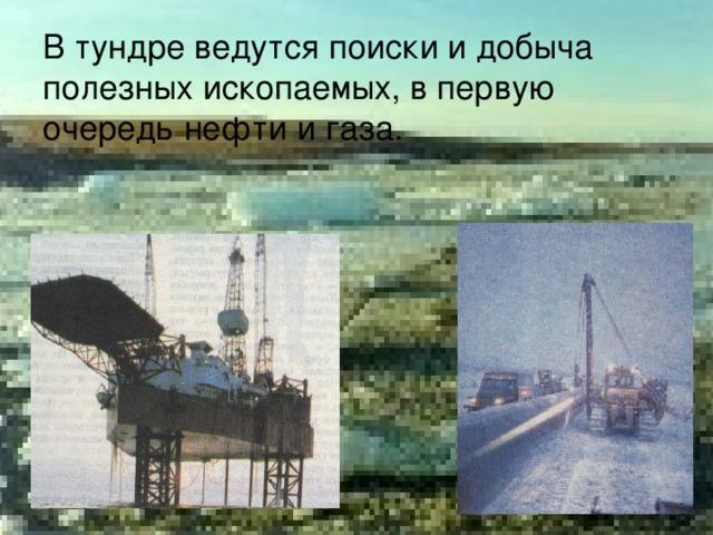 В тундре ведутся поиски и добыча  полезных ископаемых, в первую очередь нефти и газа.