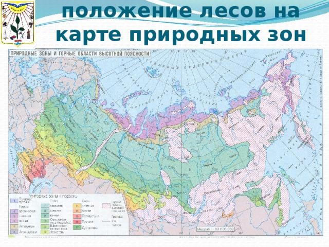 Географическое положение лесов на карте природных зон
