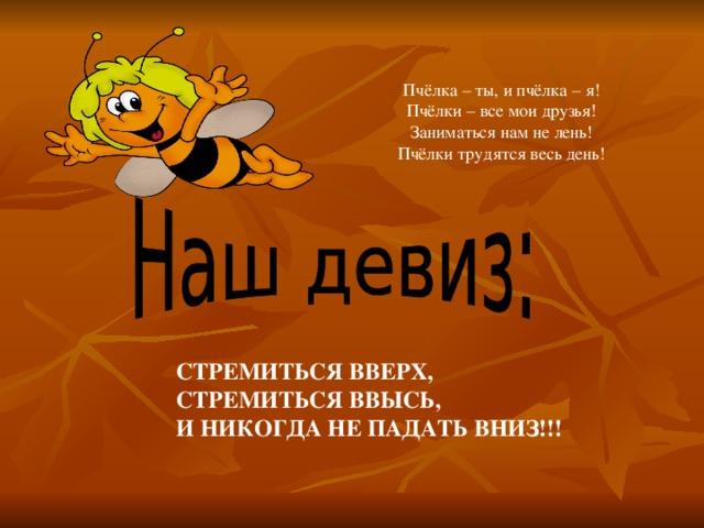 Тружусь как пчелка прикольные картинки, смешные картинки свежие