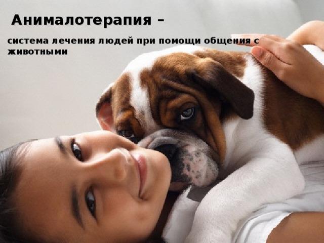 Анималотерапия –  система лечения людей при помощи общения с животными