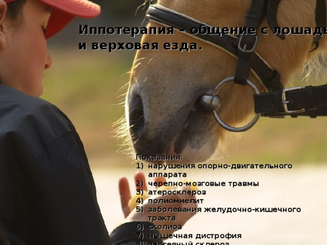 Иппотерапия – общение с лошадьми и верховая езда. Показания: нарушения опорно-двигательного аппарата черепно-мозговые травмы атеросклероз полиомиелит заболевания желудочно-кишечного тракта сколиоз мышечная дистрофия рассеяный склероз алкогольная и наркотическая зависимость