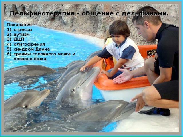Дельфинотерапия – общение с дельфинами.  Показания