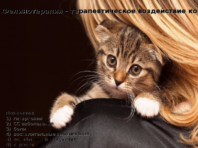 Фелинотерапия – терапевтическое воздействие кошек.  Показания:
