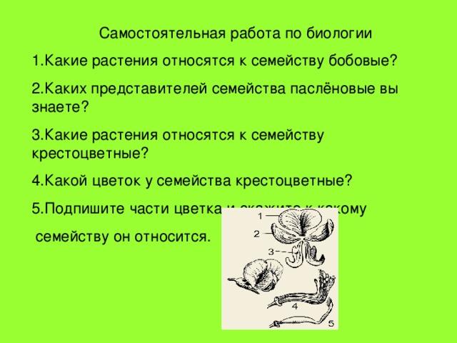 Самостоятельная работа по биологии 1.Какие растения относятся к семейству бобовые? 2.Каких представителей семейства паслёновые вы знаете? 3.Какие растения относятся к семейству крестоцветные? 4.Какой цветок у семейства крестоцветные? 5.Подпишите части цветка и скажите к какому  семейству он относится.