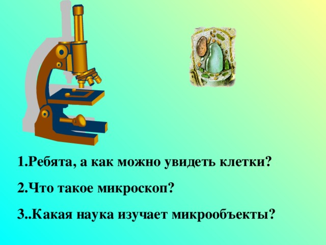 1.Ребята, а как можно увидеть клетки? 2.Что такое микроскоп? 3..Какая наука изучает микрообъекты?