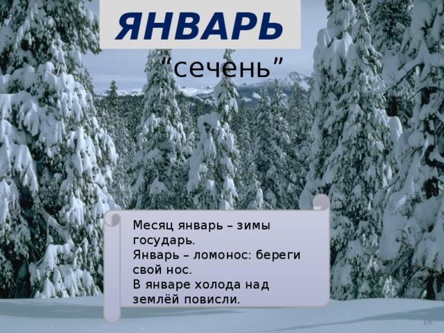 """ЯНВАРЬ  """" сечень"""" Месяц январь – зимы государь. Январь – ломонос: береги свой нос. В январе холода над землёй повисли."""