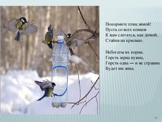 Покормите птиц зимой! Пусть со всех концов К вам слетятся, как домой, Стайки на крыльцо. Небогаты их корма. Горсть зерна нужна, Горсть одна — и не страшна Будет им зима.