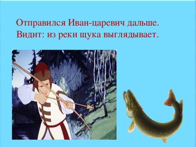 Отправился Иван-царевич дальше. Видит: из реки щука выглядывает.