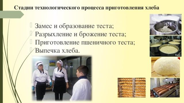 Стадии технологического процесса приготовления хлеба