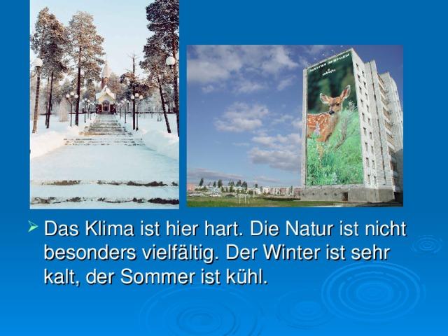 Das Klima ist hier hart. Die Natur ist nicht besonders vielfältig. Der Winter ist sehr kalt, der Sommer ist kühl.
