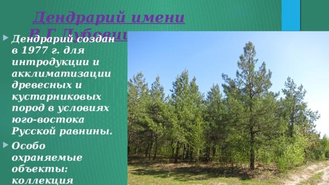 Дендрарий имени В.Г.Дубовицкого